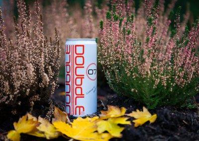 Doubdle-2