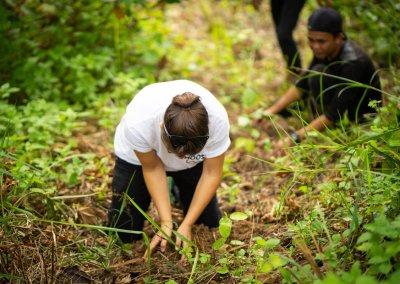 Sozial-Projekt-Sumatra-Baeume-fuer-Orang-Utans-2