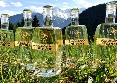 Wiesenbild-Allegra-Lifestyle-Gin