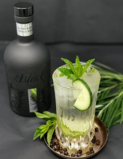 Gansloser-Black-Gin-2