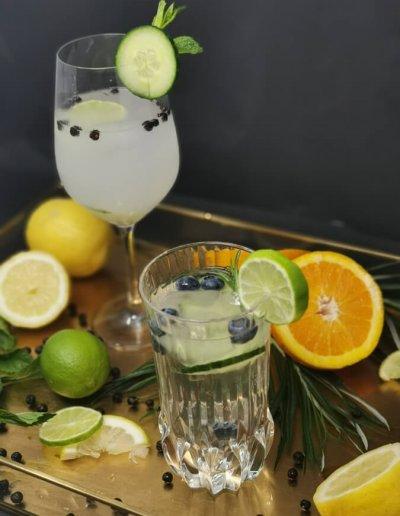 Gansloser-Black-Gin-3