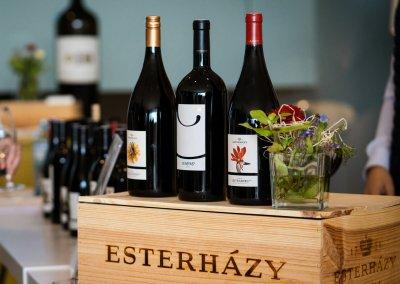 Weingut-Esterhazy-7